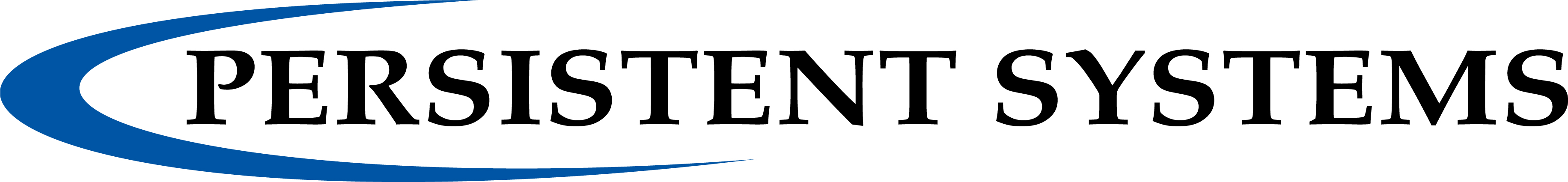 Persistent Systems, LLC - Lunch Sponsor